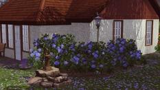 Дом с конюшней